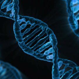 Hände weg! Mein Genom gehört mir!