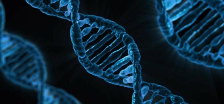Unsere DNA verrät einiges über unser Leben